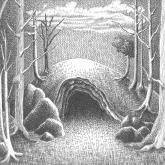<b>Forêt et caverne</b> - Plume et encre